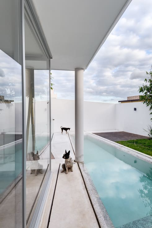 Ten House: Albercas de estilo minimalista por Taller ADC Architecture Office