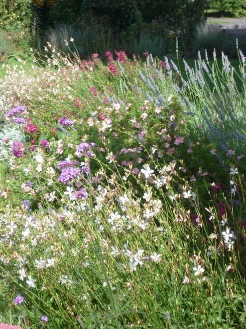 Giardino in stile In stile Country di Samantha Willis Garden Design