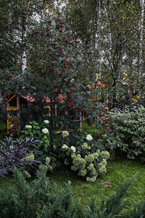 Дом: Сады в . Автор – Николай Карачев