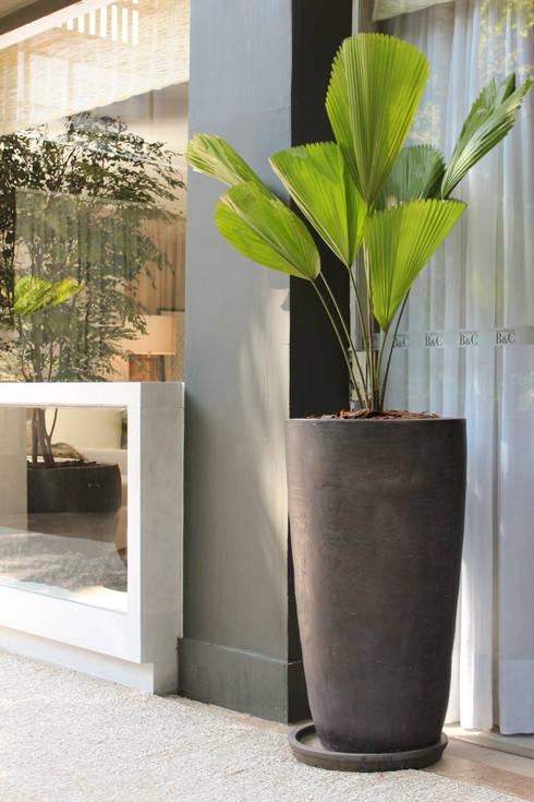 Artefacto B&C | 2014 | Débora Aguiar: Jardins modernos por Folha Paisagismo