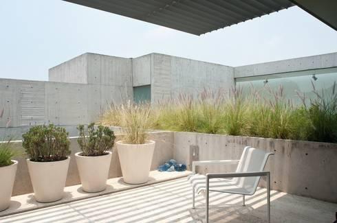 Calderón de la Barca 114: Terrazas de estilo  por Gantous Arquitectos