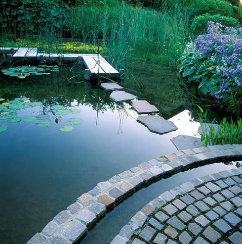 Ecologic City Garden - Paul Marie Creation의  수영장