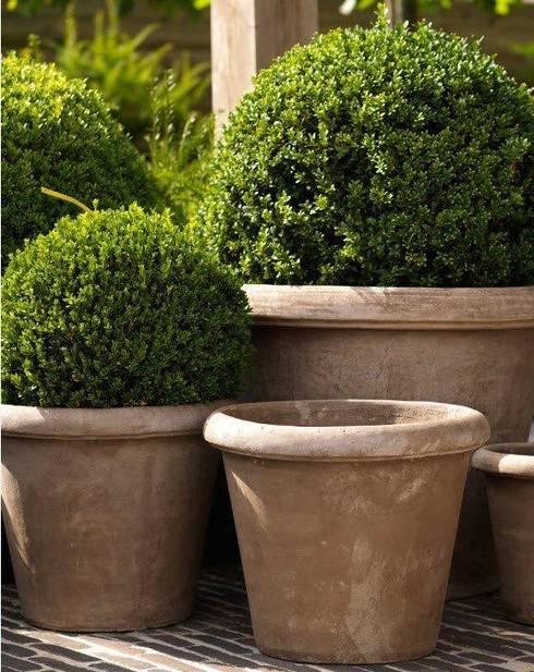 Jardín de estilo  por Montecchio S.r.l.
