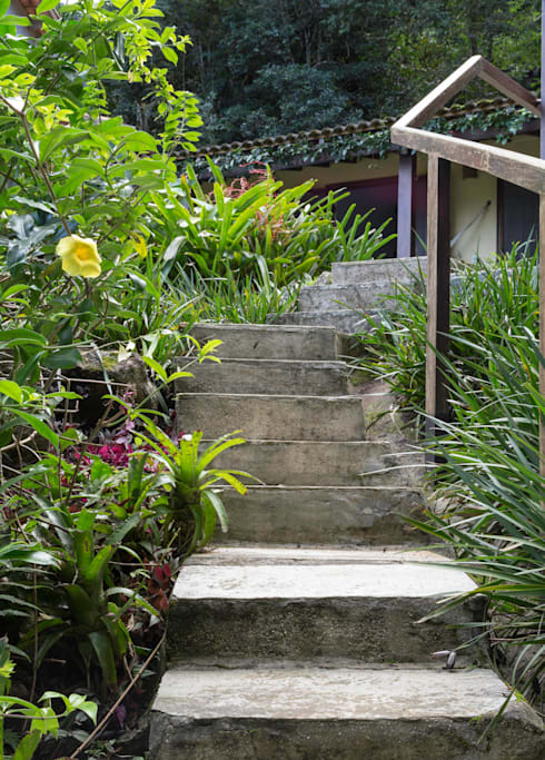 Projekty,  Ogród zaprojektowane przez Lucia Manzano