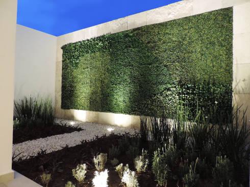 Casa SF: Jardines de estilo moderno por acosta arquitecto