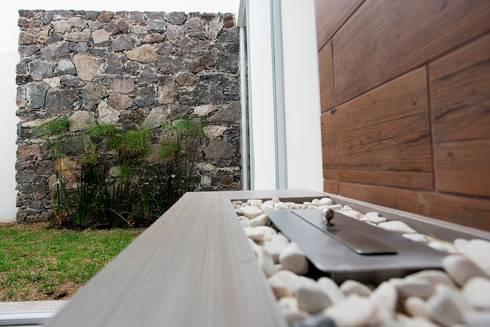Chimenea y Jardín: Salas de estilo minimalista por JF ARQUITECTOS