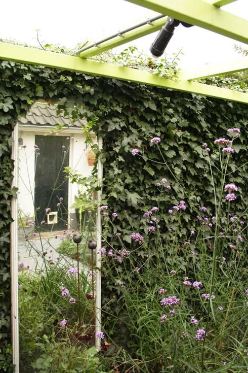 Mini patio tuin Wijk bij Duurstede: klasieke Tuin door Mocking Hoveniers