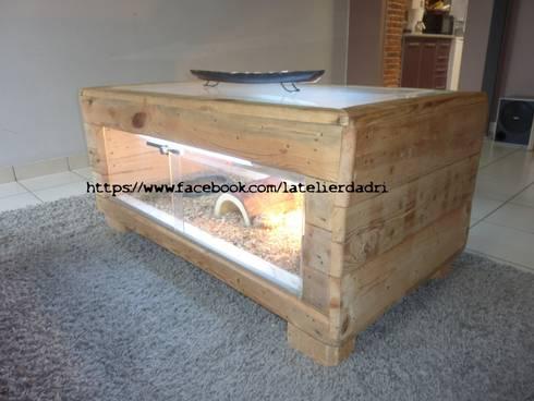 l 39 atelier d 39 adri terrarium bois de palettes par l 39 atelier d 39 adri homify. Black Bedroom Furniture Sets. Home Design Ideas