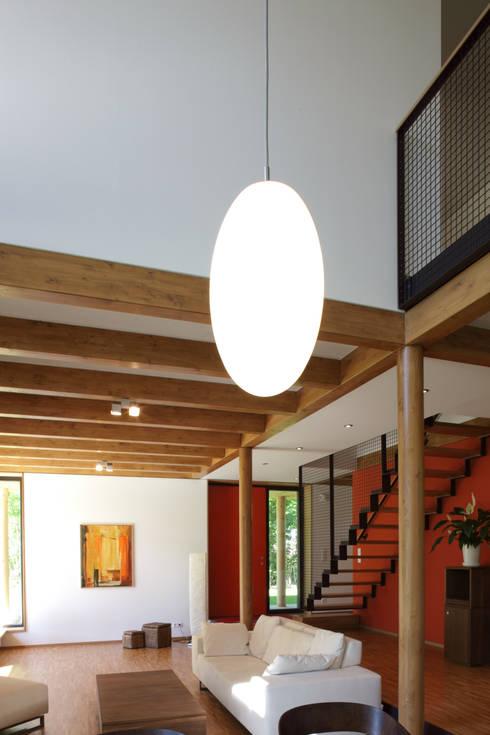 passivhaus villa im park spreti neuenhagen bei berlin de architekturwerkstatt vallentin gmbh. Black Bedroom Furniture Sets. Home Design Ideas