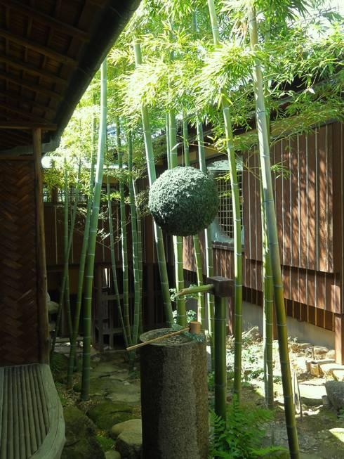 苔玉: 木村博明 株式会社木村グリーンガーデナーが手掛けた庭です。