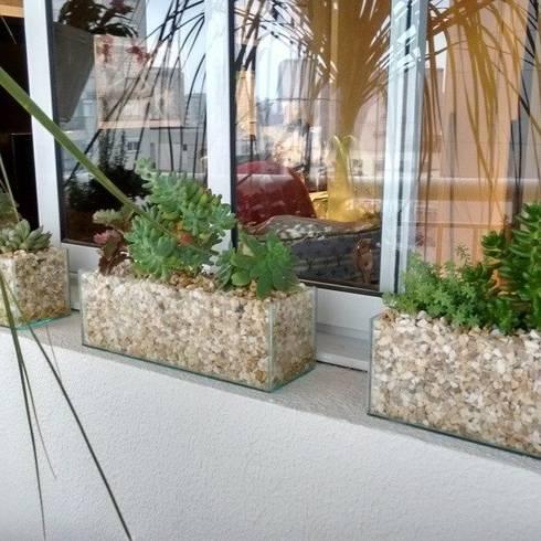 Suculentas na janela: Varanda, alpendre e terraço  por Amaria Gonçalves - Design Paisagismo
