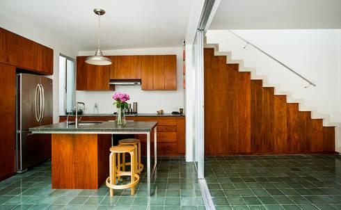 Casa del Arbol: Cocinas de estilo moderno por Taller Estilo Arquitectura