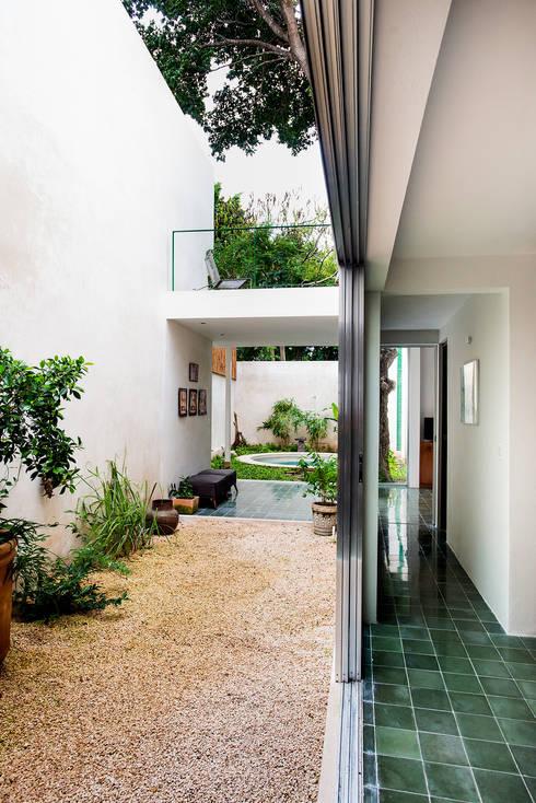 Casa del Arbol: Casas de estilo moderno por Taller Estilo Arquitectura