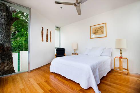 Casa del Arbol: Recámaras de estilo moderno por Taller Estilo Arquitectura
