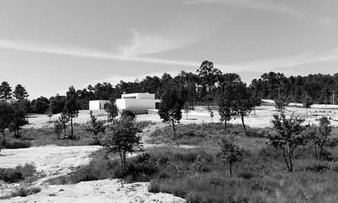 casas P: Casas minimalistas por Artspazios, arquitectos e designers