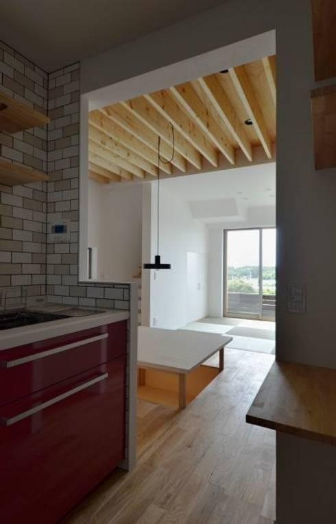 湖西の家: 岩田建築アトリエが手掛けたキッチンです。