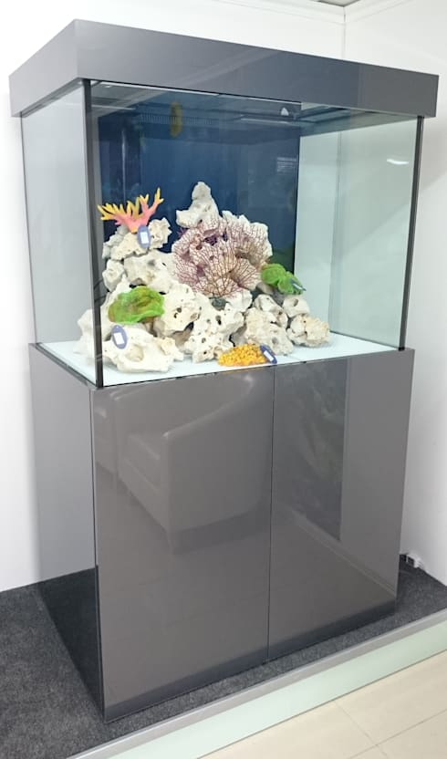 Marine And Tropical Aquariums With Cabinets By Prime