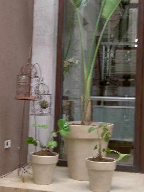 Un jardin oriental por baires green muebles homify for Muebles asiaticos baratos
