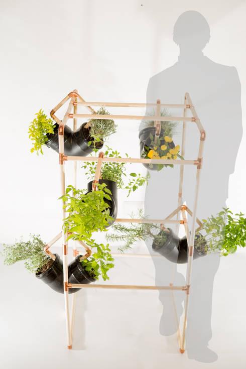 Huerto urbano 45/90: Jardín de estilo  por Mono Studio