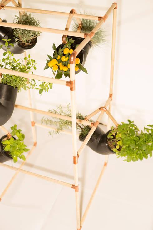 Jardines de estilo moderno por Mono Studio