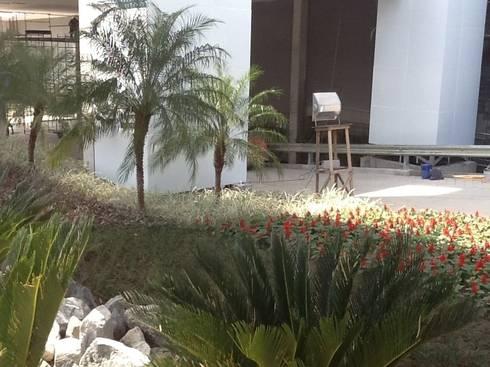 Paisagismo Shopping Sulacap( durante o processo de execução): Shopping Centers  por Roncato Paisagismo e Comércio de Plantas Ltda