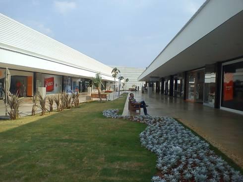 Paisagismo Outlet Premium Brasilia ( Jardim recém-plantado): Shopping Centers  por Roncato Paisagismo e Comércio de Plantas Ltda
