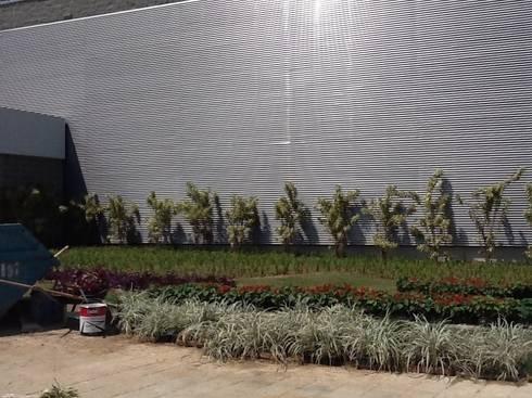 Paisagismo Shopping Sulacap (durante o processo de execução): Shopping Centers  por Roncato Paisagismo e Comércio de Plantas Ltda