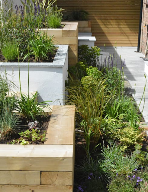 A small contemporary front garden:  Garden by Robert Hughes Garden Design