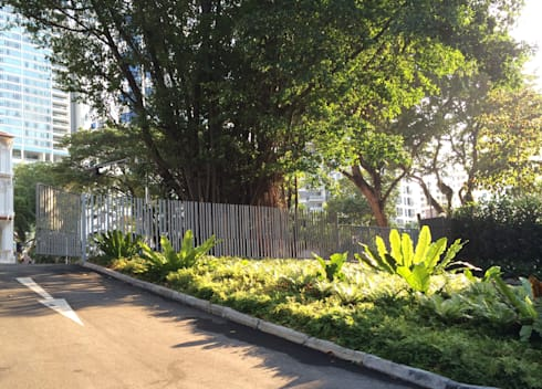 Inessence Sales Gallery: tropical Garden by Tinderbox  Landscape Studio
