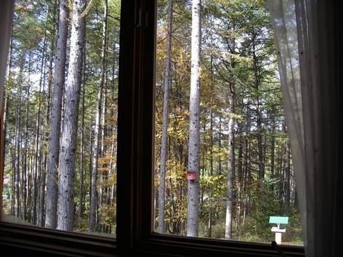 一番のこだわりは窓から見る森の景色: Cottage Style / コテージスタイルが手掛けた庭です。