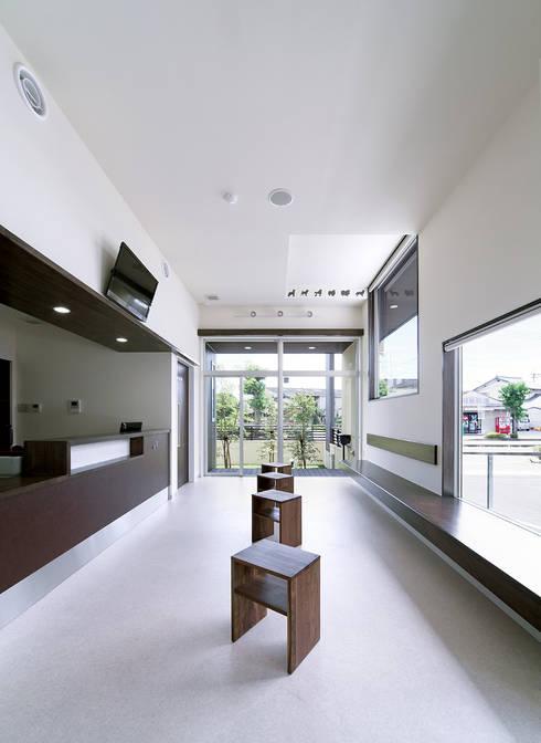 U animal clinic: トヨダデザインが手掛けた窓です。