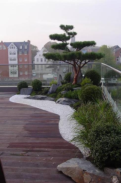 Jardines de estilo  de Kokeniwa Japanische Gartengestaltung