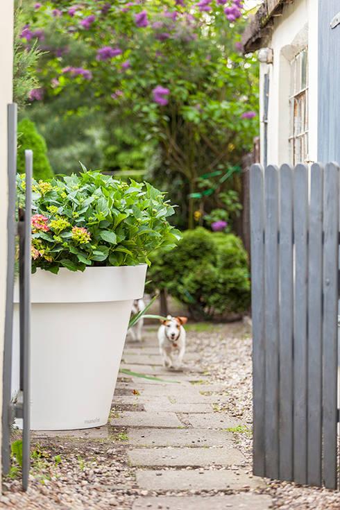 Duża donica Gianto: styl , w kategorii Ogród zaprojektowany przez TerraForm