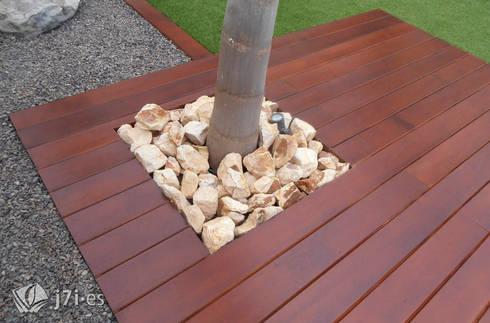6. Un pequeño alcorque: Jardines de estilo minimalista de Jardineria 7 islas