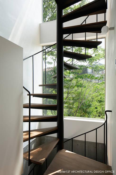 階段: atelier137 ARCHITECTURAL DESIGN OFFICEが手掛けた廊下 & 玄関です。