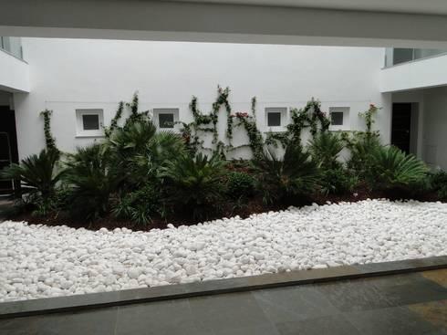 Habitação | Estoril | Cascais: Jardins de Inverno modernos por shfa