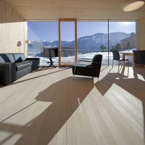Einfamilienhaus Bout: minimalistische Wohnzimmer von Madritsch*Pfurtscheller