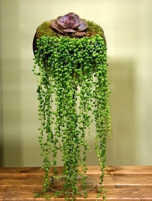 Hogar de estilo  por bitki dekor