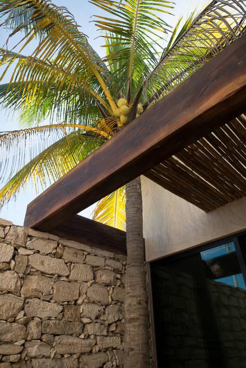 Jardines de estilo moderno por Alberto Zavala Arquitectos