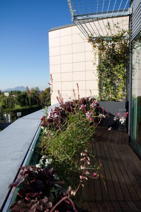Il giardino verticale in terrazza di sundar italia homify - Giardino in terrazza ...