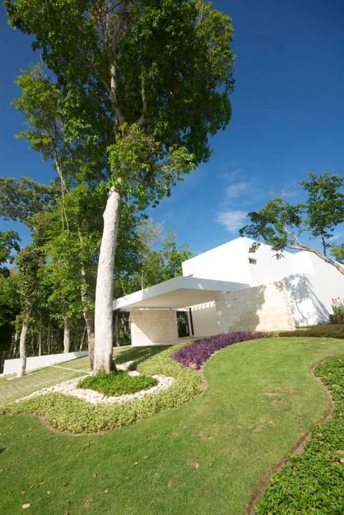 Casa entre Arboles: Casas de estilo moderno por Enrique Cabrera Arquitecto