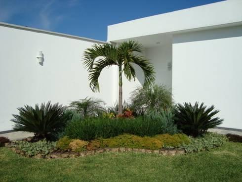 Palma Kerpis: Jardines de estilo topical por Vivero Sofia