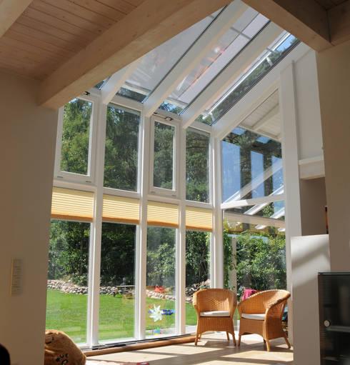 modern Conservatory by Dammann-Haus GmbH