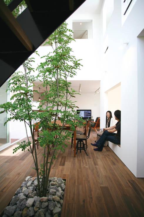 室内に植えられたシマトネリコ: スターディ・スタイル一級建築士事務所が手掛けたダイニングです。