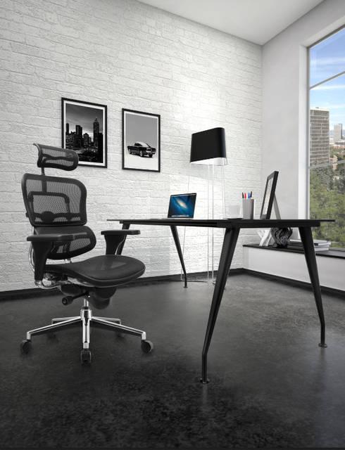 Grupo Requiez, SA de CV:  tarz Ofis Alanları & Mağazalar