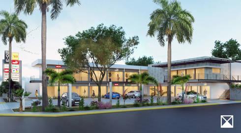 VISTA : Jardines de estilo topical por ANGOLO-grado arquitectónico