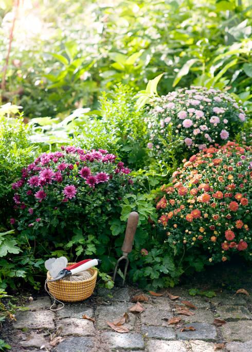 Jardins clássicos por Pflanzenfreude.de