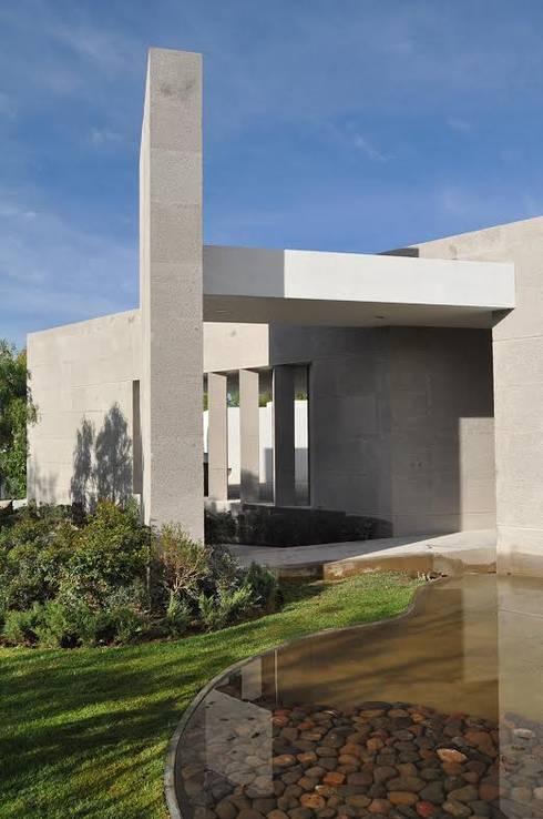 CASA PM: Jardines de estilo moderno por Vito Ascencio y Arquitectos