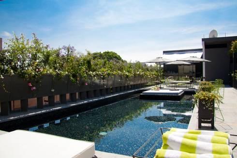 Flor de Mayo Hotel & Restaurant: Albercas de estilo moderno por Elías Arquitectura