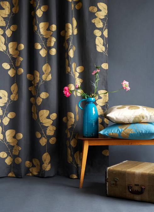 modern Living room by Jocelyn Warner